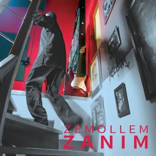 Zemollem- Zanim (2018)
