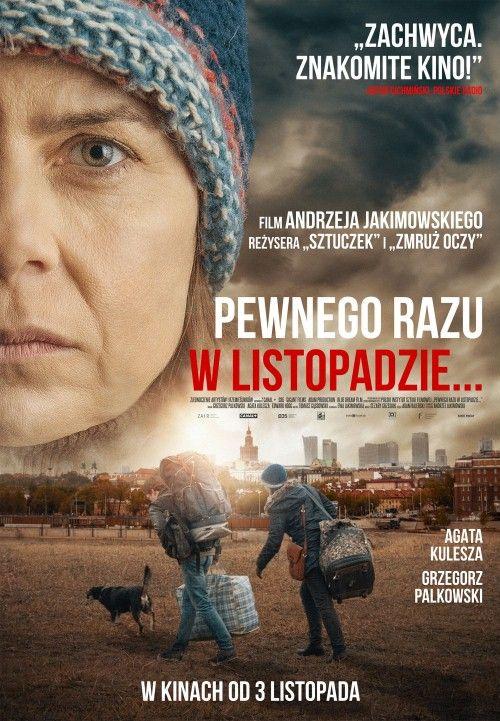 Pewnego razu w listopadzie (2017) PL.DVDRip.x264-KiT / Film polski