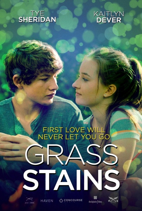 Plamy z trawy / Grass Stains (2017)  PL.HDTV.Xvid-DiDi / Lektor PL