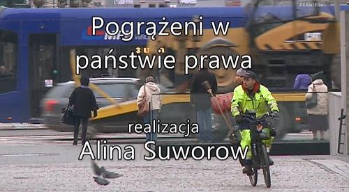 Pogrążeni w państwie prawa (2017) PL.1080i.HDTV.h264-HcI | PL