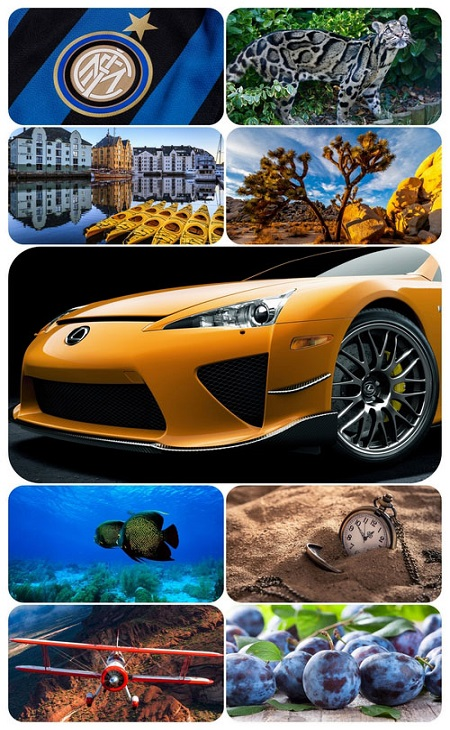 Beautiful Mixed Wallpapers Pack 823