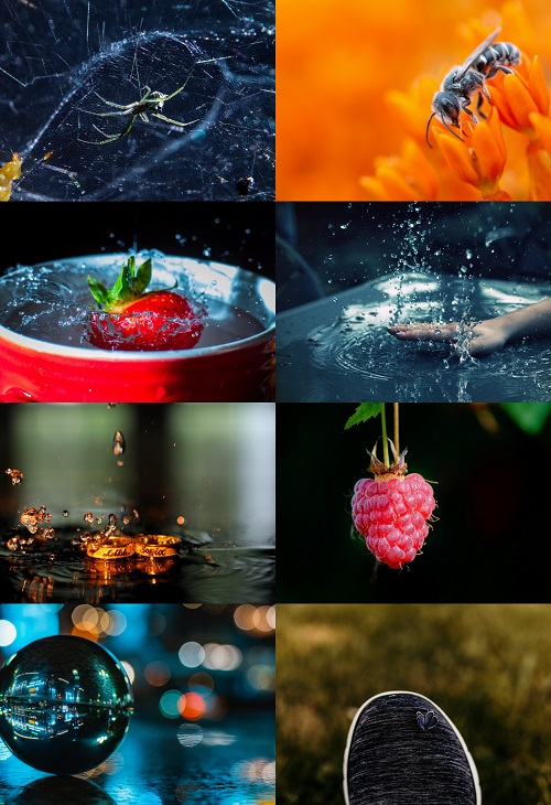 4K UltraHD Macro Wallpapers by PLYBACK #3