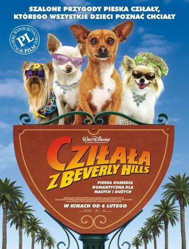 Cziłała z Beverly Hills / Beverly Hills Chihuahua (2008) PL.DUB.DVDRip.XviD.AC3-Zelwik / Dubbing PL
