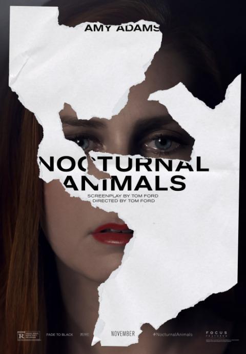 Zwierzęta nocy / Nocturnal Animals (2016) PL.720p.BRRip.XviD.AC3-SPEC [Lektor PL]