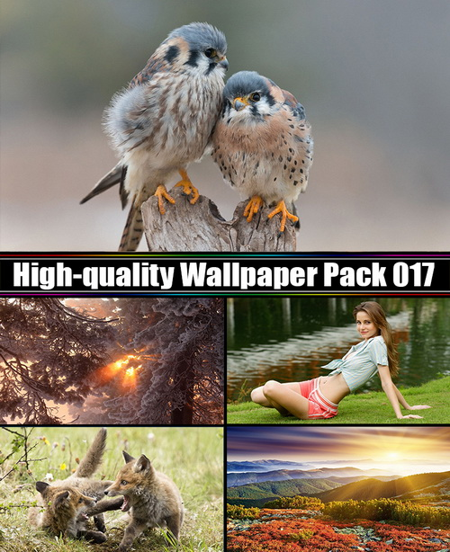 High-quality Wallpaper Pack 17