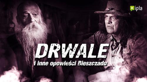 Drwale i inne opowieści Bieszczadu (2015-2019) {Sezon 1} PL.720p.WEB-DL.x264-CUKIERECZEK / Serial Polski